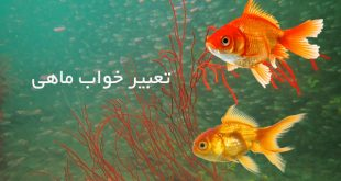 تعبیر خواب ماهی ، تعبیر دیدن ماهی در خواب