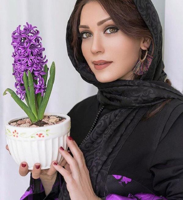 بیوگرافی شهرزاد کمال زاده ویکی پدیا