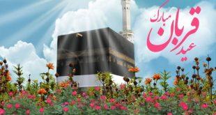 سنت پیامبر (ص) در عید قربان