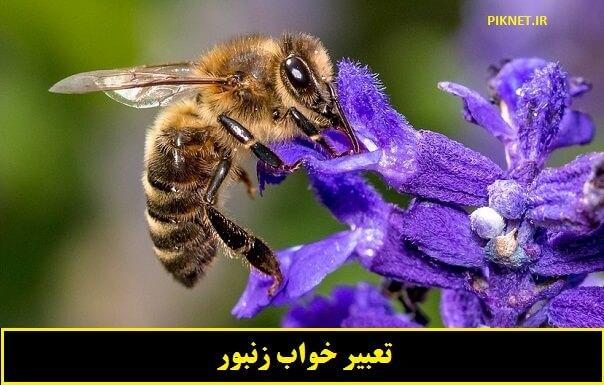 تعبیر خواب زنبور از معبران اسلامی