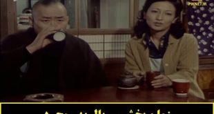 زمان پخش و تکرار سریال پدر مجرد از شبکه تماشا
