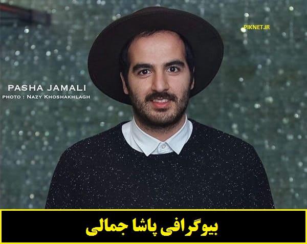 بیوگرافی پاشا جمالی بازیگر نقش مهیار در سریال نون خ + عکس