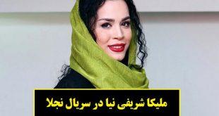 بیوگرافی ملیکا شریفی نیا بازیگر نقش شیرین در سریال نجلا